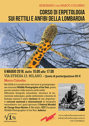 locandina-seminario-di-erpetologia