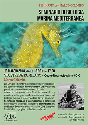 seminario-di-biologia-marina
