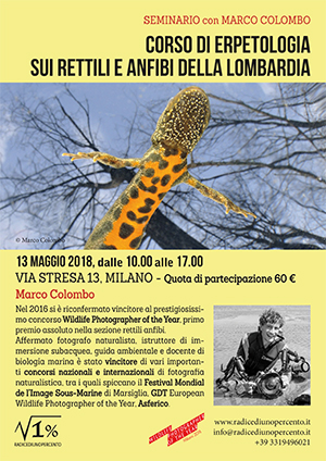 seminario-di-erpetologia