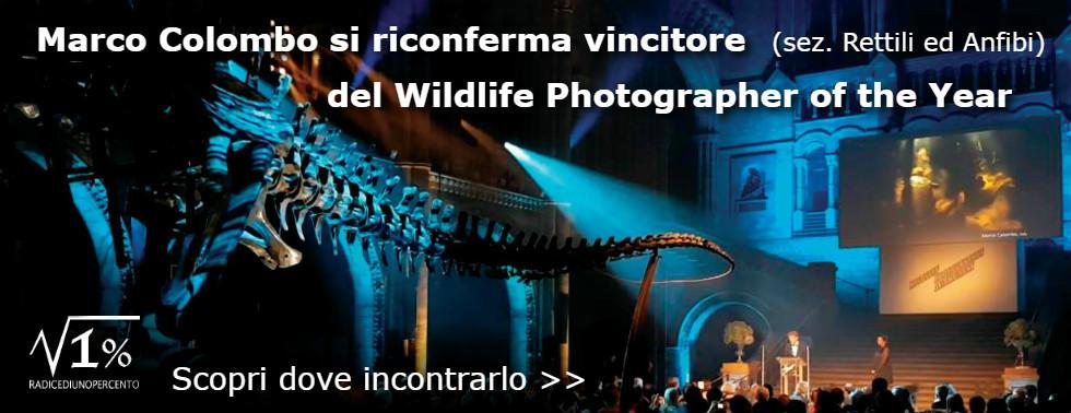 premiazione_colombo_slide_web