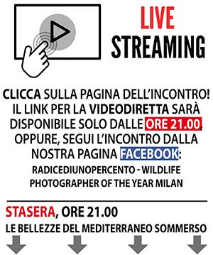 Diretta Streaming Verticale 300 pixel