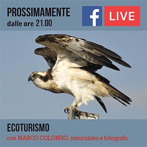 Locandina Incontro Ecoturismo #online