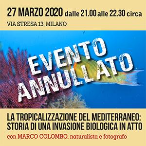 Locandina Incontro Tropicalizzazione del mediterraneo 300x300 pixel