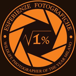 logo-accademia-workshop