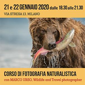 Corso di fotografia Naturalistica 300x300 pixel