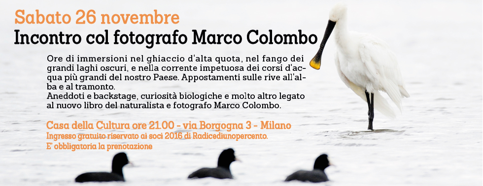 slider-libroColombo