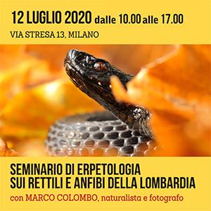 Locandina Seminario di Erpetologia 300x300 pixel