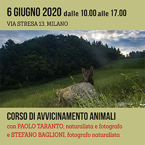 Locandina corso di avvicinamento animali 300x300 pixel