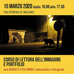 Locandina lettura portfolio 300x300 pixel
