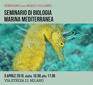 Locandina seminario di Biologia Marina ok