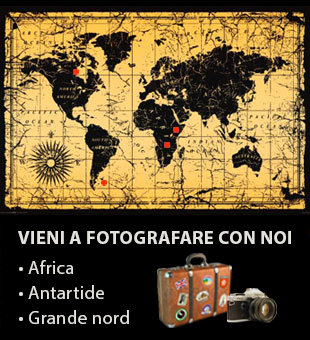 banner-viaggi