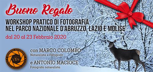 Buono Regalo Abruzzo Febbraio 2020 - 500x238 pixel