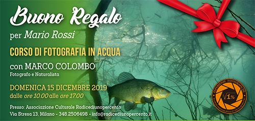 Buono Regalo Corso Fotografia in Acqua 2019 - 500x238 pixel