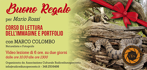 Buono Regalo Corso Lettura immagine e portfolio 500x238 pixel