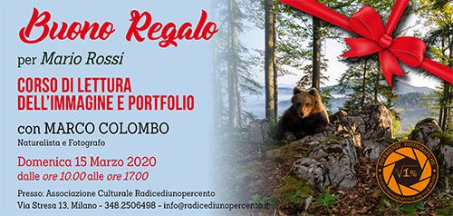 Buono Regalo Corso Lettura immagine e portfolio 500x238-pixel