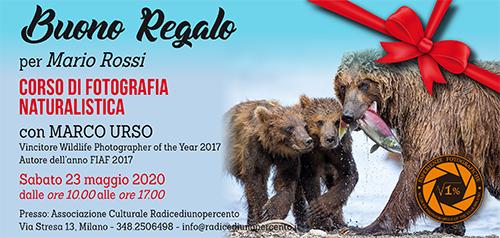 Buono Regalo Corso Naturalistica 500x238 pixel