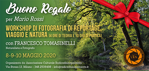 Buono Regalo Corso Reportage Tomasinelli Maggio 500x238-pixel