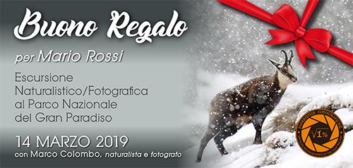 Buono Regalo Gran Paradiso 14 Marzo - 500x238 pixel