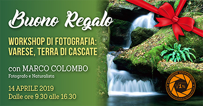 Buono regalo Workshop Cascate a Varese 400 pixel