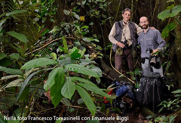 Biggi e Tomasinelli 600x408 pixel