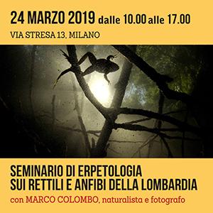 Locandina Seminario di Erpetologia - primavera 2019