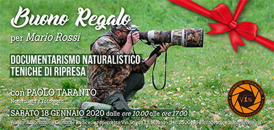 Buono Regalo Corso Landscape - 400x190 pixel