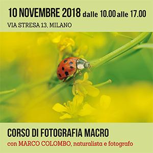 Locandina Fotografia macro - 10 Novembre 2018 - 300x300 pixel
