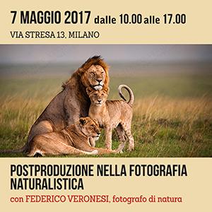 Locandina Lightroom Veronesi 300x300 pixel