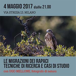 Locandina seminario di Migrazione Rapaci - Mellone