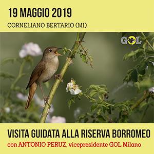 Locandina visita guidata Riserva Borromeo 19 Maggio 2019