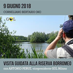 Locandina visita guidata Riserva Borromeo 9 Giugno 2018