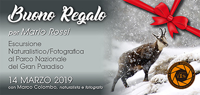 Buono Regalo Gran Paradiso 14 Marzo - 400x209 pixel