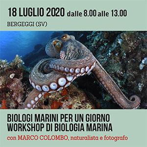 Locandina seminario di Biologia Marina Pratico