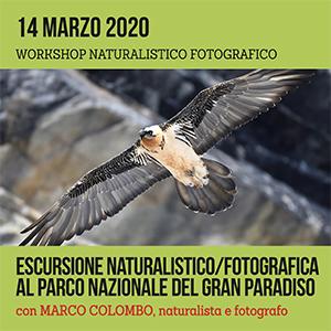 Locandina workshop di Gran Paradiso 14 Marzo 2020