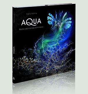Copertina libro Acqua 300x320 pixel