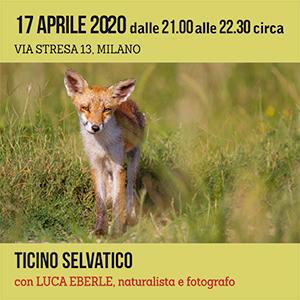 Locandina Incontro Ticino Selvatico - Eberle 300x300 pixel