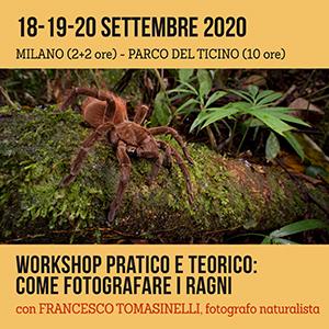 Locandina Workshop con Tomasinelli - fotografare i Ragni