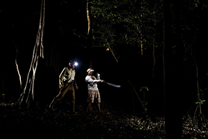 trekking in rainforest, amazon, rio negro, brasil