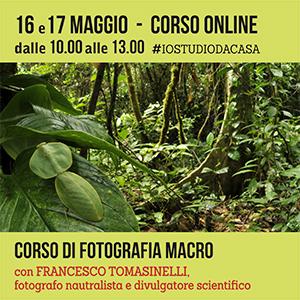 Locandina Corso Marco con Tomasinelli Online 300x300 pixel