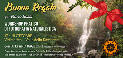 Buono Regalo Workshop di Fotografia Naturalistica Foliage con Baglioni 400x190 pixel