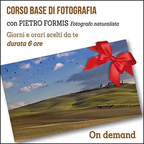 buono_regalo_base_formis_500x500pixel
