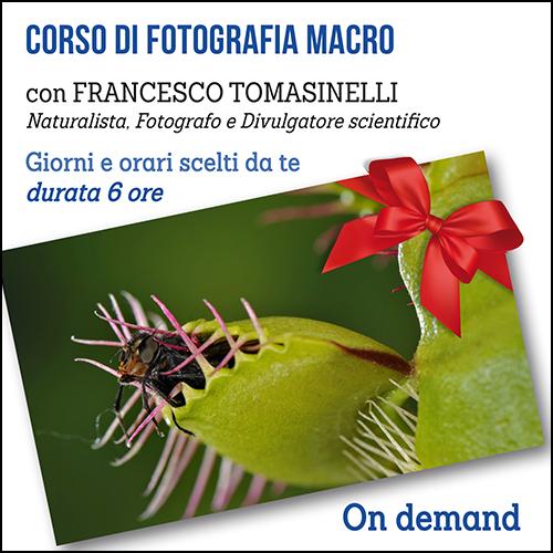 buono_regalo_macro_500x500pixel_ok