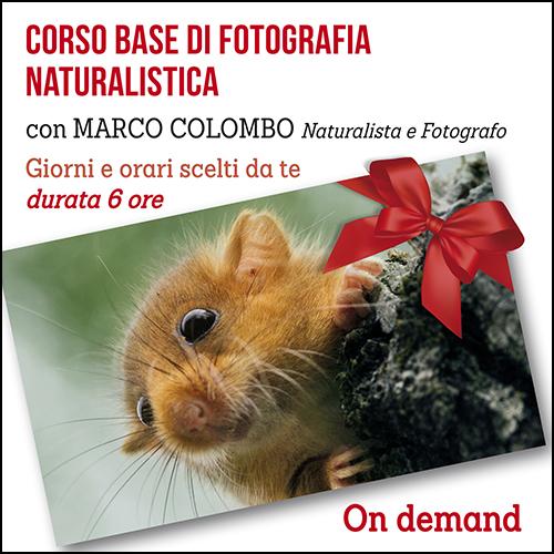 buono_regalo_naturalistica_500x500pixel_ok