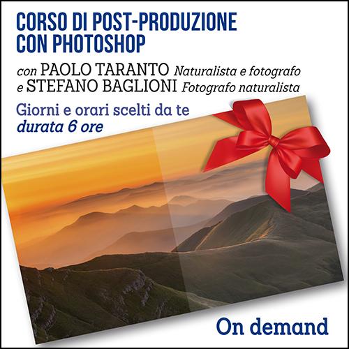 buono_regalo_post-produzione_500x500pixel