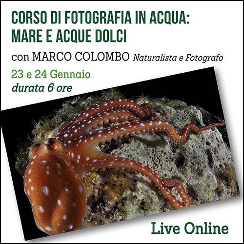 fotografia_in_acqua_per_acquisto_corsi