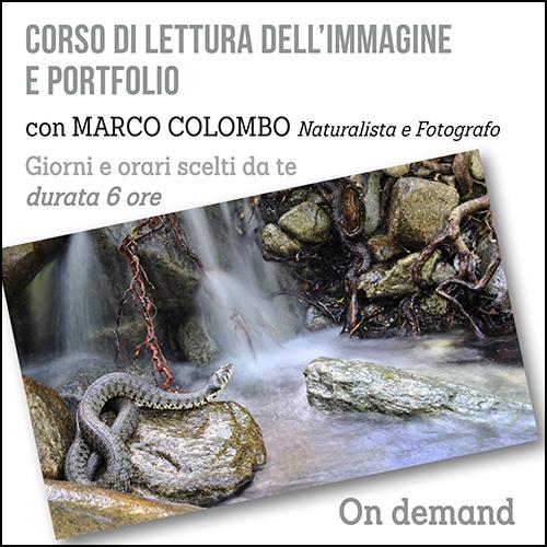 lettura_immagine_per_acquisto_corsi