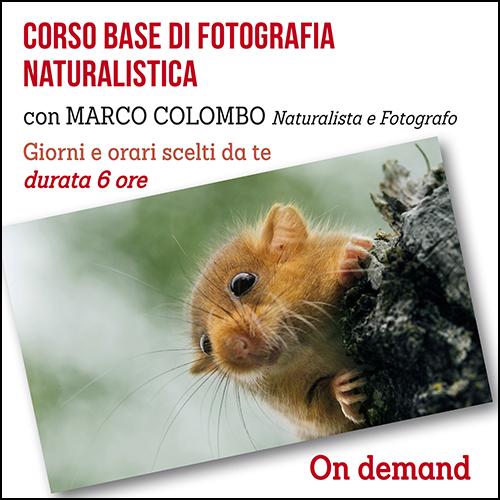 naturalistica_base_acquisto_corsi