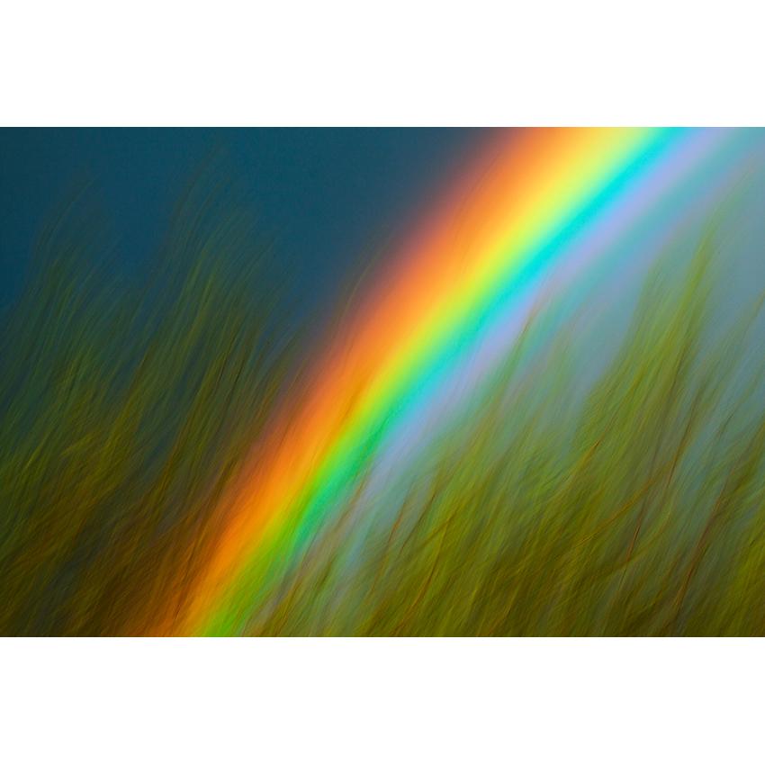 19 stampa Stefano Baglioni 850×850 pixel