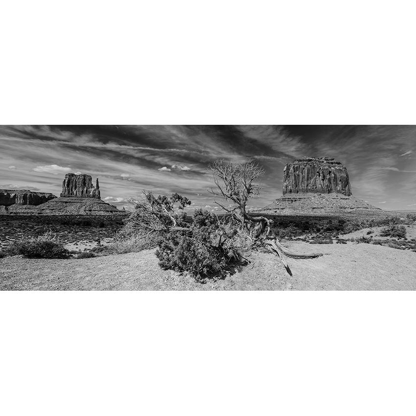6 stampa Stefano Baglioni 850×850 pixel