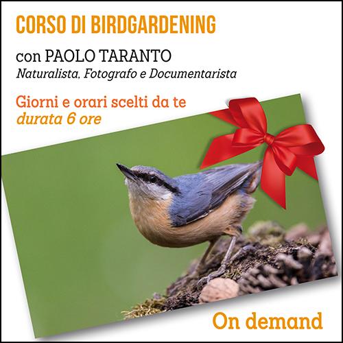 buono_regalo_birdgardening_500x500pixel